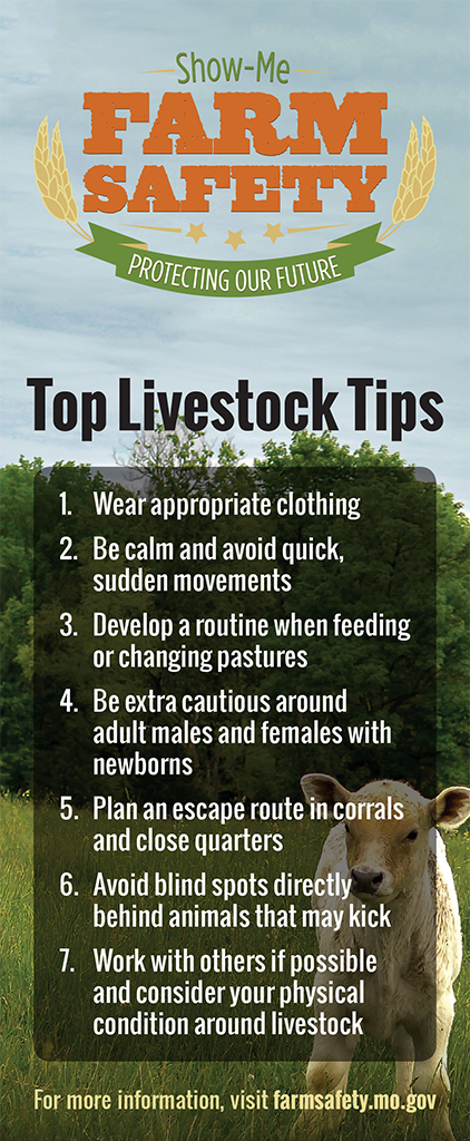 Driver Safety Tips >> Livestock - Show-Me Farm Safety