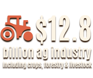 Missouri agricultural industry totals $12.8 billion dollars including crops, forestry, and livestock.
